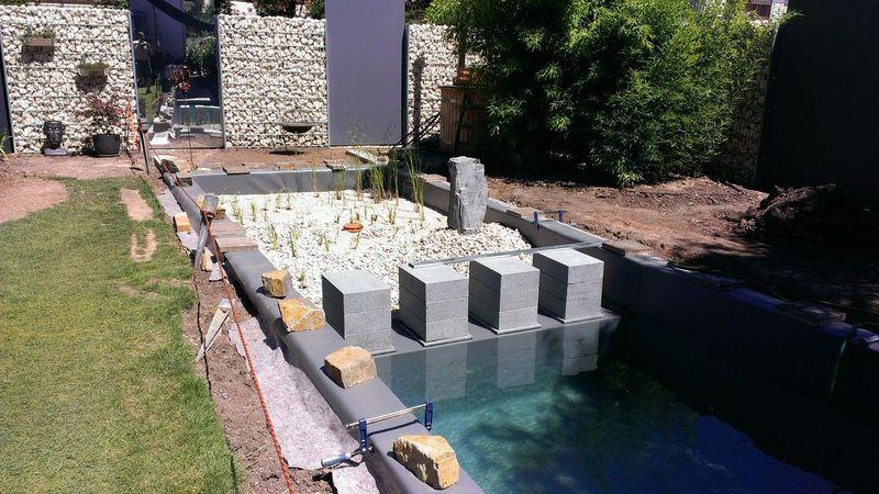 naturpool bei mannheim heidelberg dokumentation schwimmteichbau der treffpunkt f r. Black Bedroom Furniture Sets. Home Design Ideas