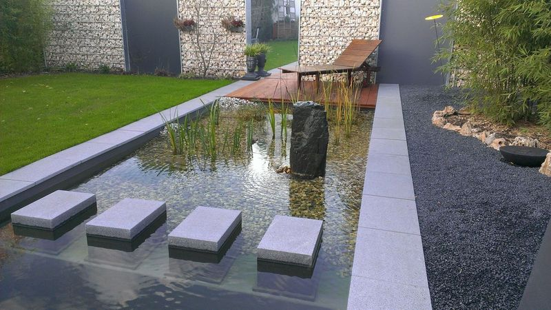 naturpool bei mannheim heidelberg dokumentation. Black Bedroom Furniture Sets. Home Design Ideas